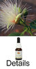 BILLY GOAT PLUM Australian Bush Flower Essences