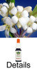 PITTOSPORUM Australian Flower Essences Australische Buschblüten