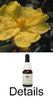 HIBBERTIA Australian Bush Flower Essences