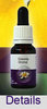 COWSLIP ORCHID Living Essences Buschblüten