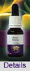 BROWN BORONIA Living Essences