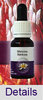 MENZIES BANKSIA Living Essences Buschblüten
