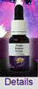 PURPLE ENAMEL ORCHID Living Essences Buschblüten