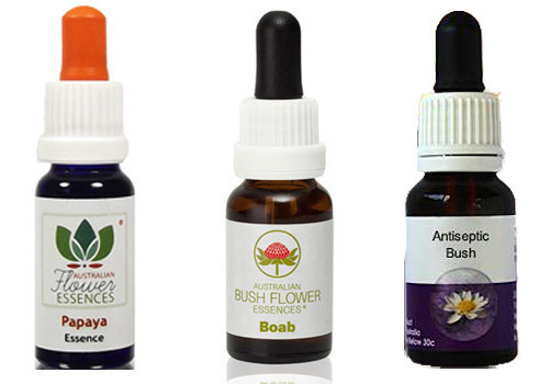 Australian bushflower essences