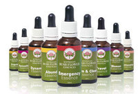 Essenzen Kombinationen von Ian White Australian Bush Flower Essences