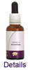 Relaxation Kombination Living Essences